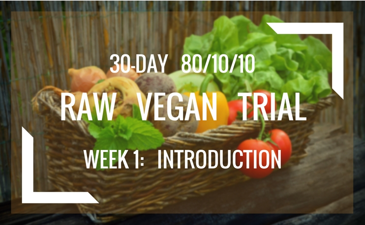 80/10/10 Raw Vegan 30-Day Trial — Week 1: Introduction